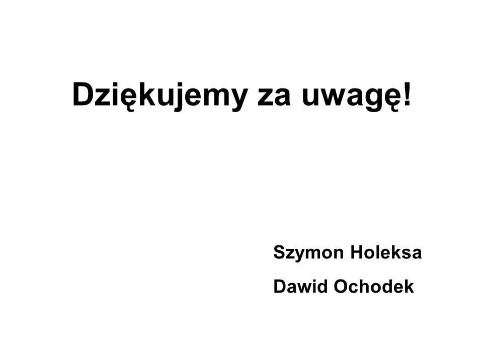 Dziękujemy za uwagę! Szymon Holeksa Dawid Ochodek