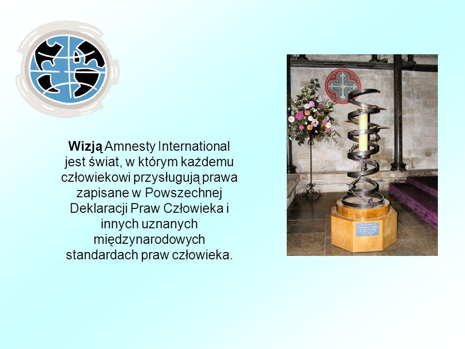 Wizją Amnesty International jest świat, w którym każdemu człowiekowi przysługują prawa zapisane w Powszechnej Deklaracji Praw Człowieka i innych uznanych międzynarodowych standardach praw człowieka.