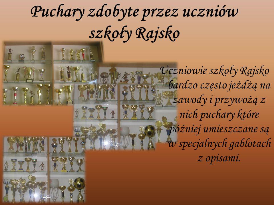 Puchary zdobyte przez uczniów szkoły Rajsko