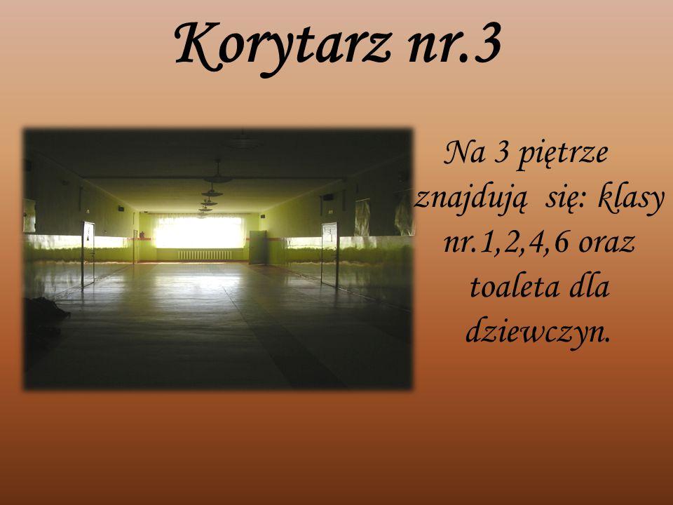 Korytarz nr.3 Na 3 piętrze znajdują się: klasy nr.1,2,4,6 oraz toaleta dla dziewczyn.