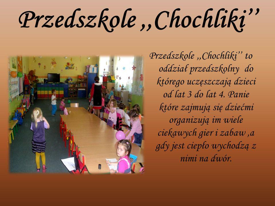 Przedszkole ,,Chochliki''