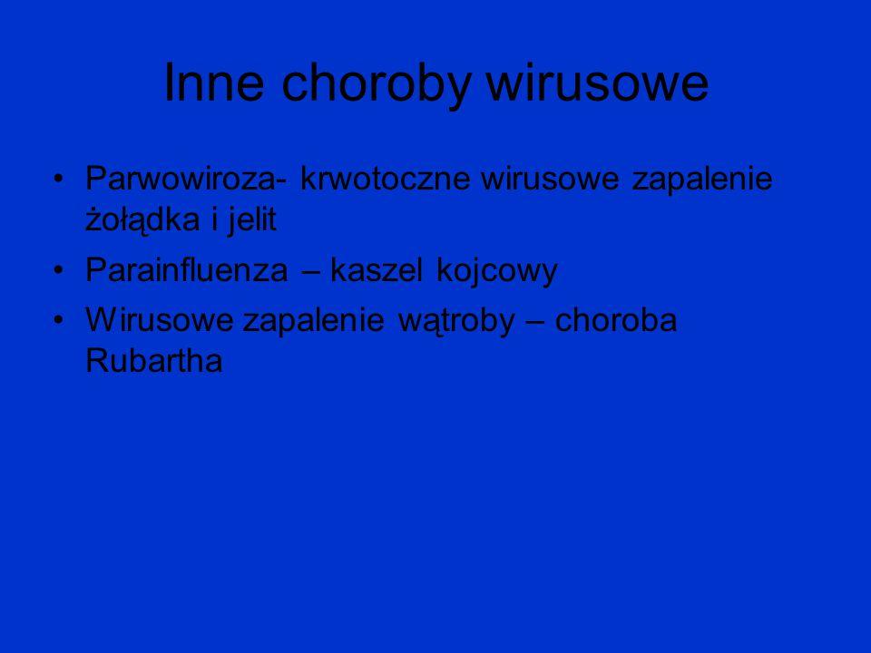 Inne choroby wirusowe Parwowiroza- krwotoczne wirusowe zapalenie żołądka i jelit. Parainfluenza – kaszel kojcowy.