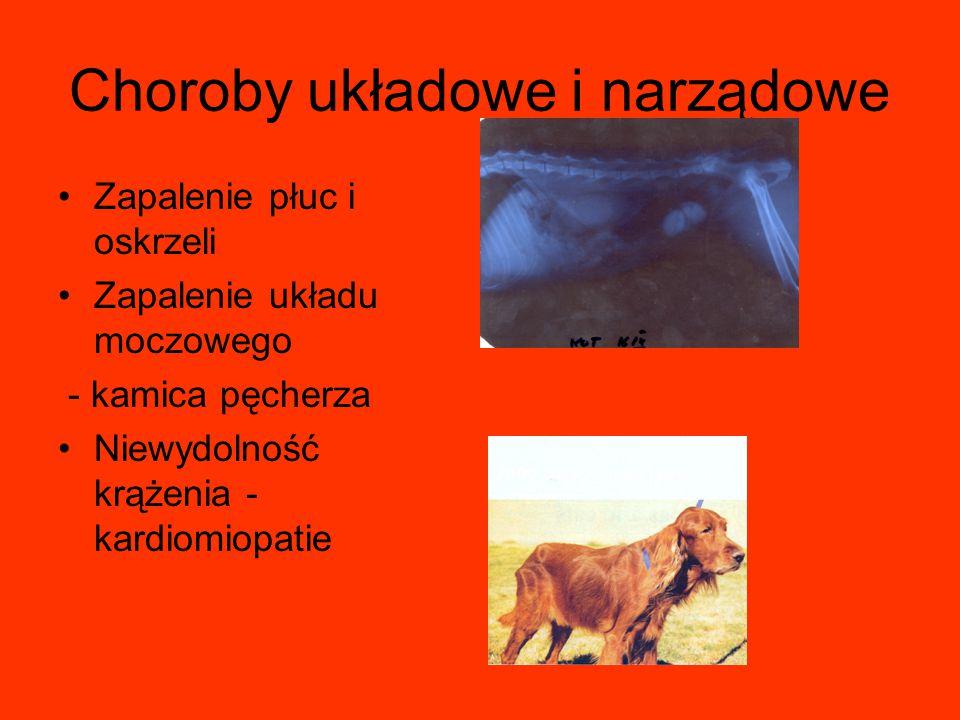 Choroby układowe i narządowe