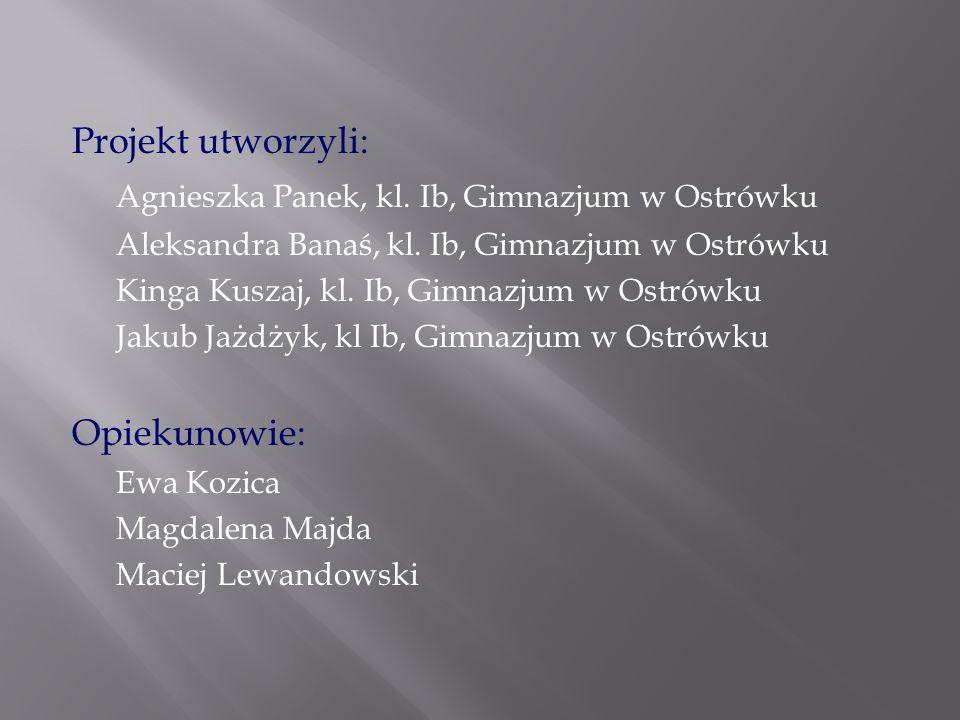 Agnieszka Panek, kl. Ib, Gimnazjum w Ostrówku