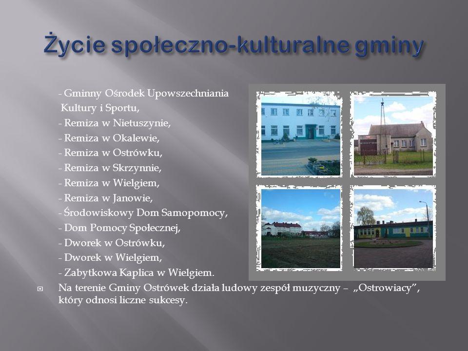 Życie społeczno-kulturalne gminy