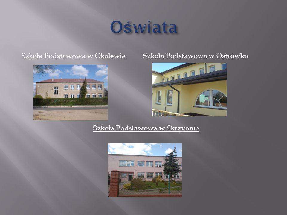 Oświata Szkoła Podstawowa w Okalewie Szkoła Podstawowa w Ostrówku