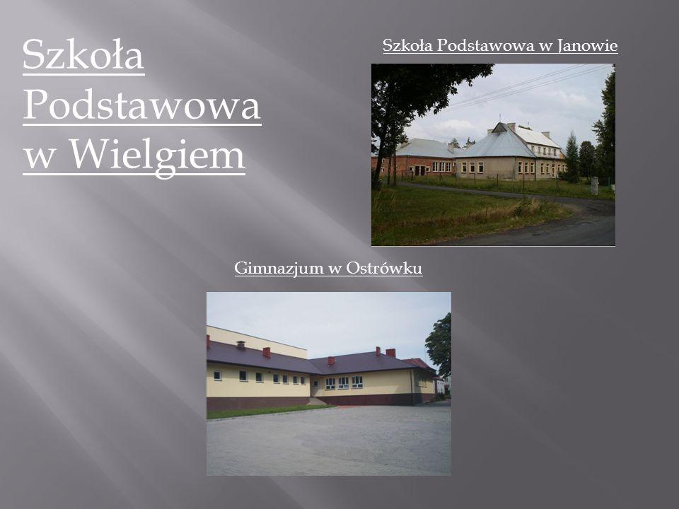 Szkoła Podstawowa w Wielgiem Szkoła Podstawowa w Janowie