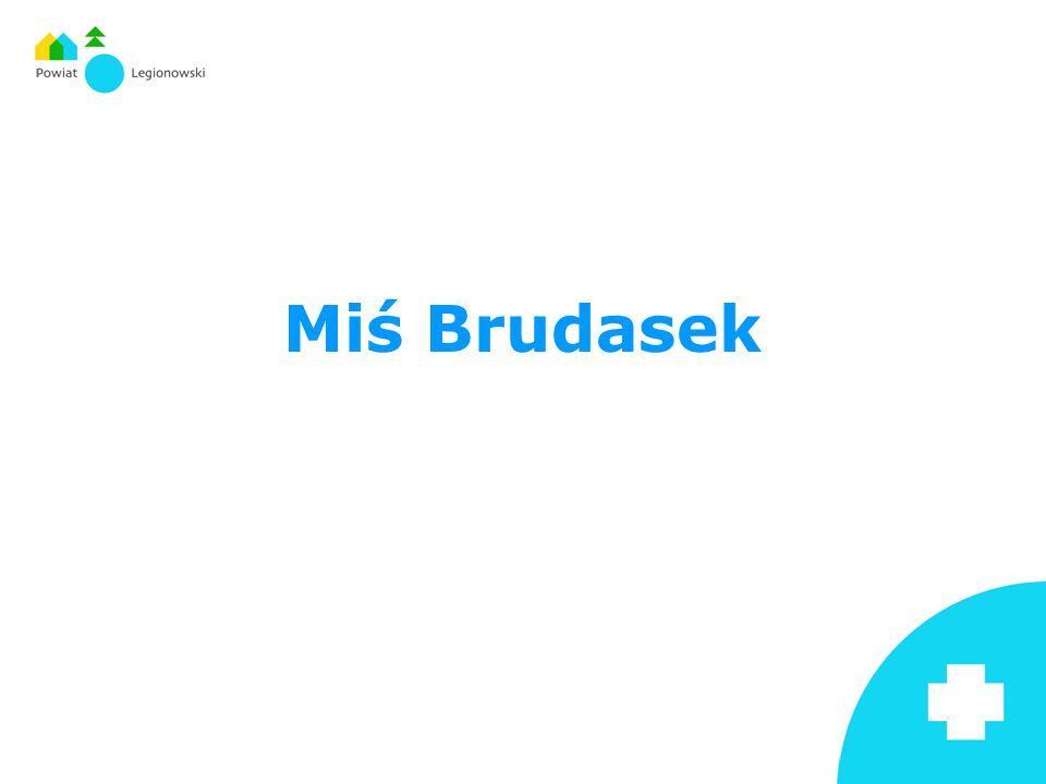 Miś Brudasek