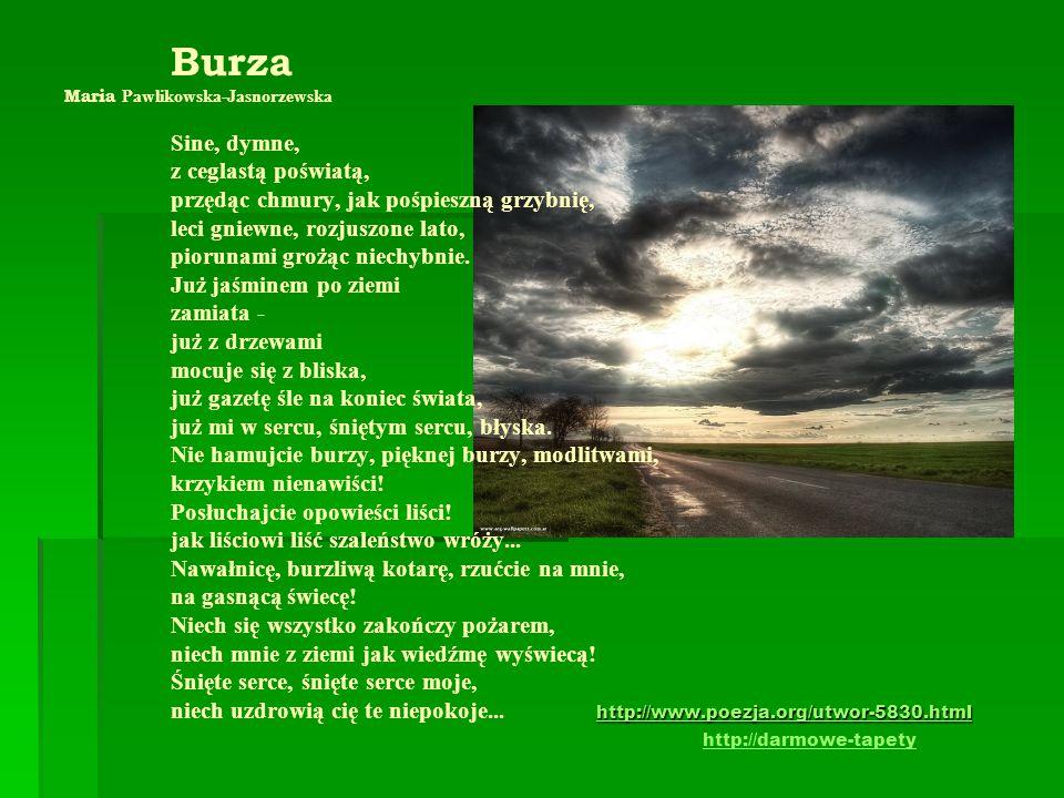 Burza Maria Pawlikowska-Jasnorzewska. Sine, dymne,