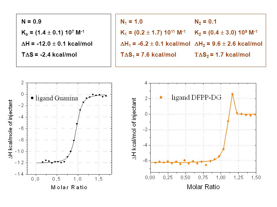  ligand Guanina N = 0.9 Ka = (1.4  0.1) 107 M-1