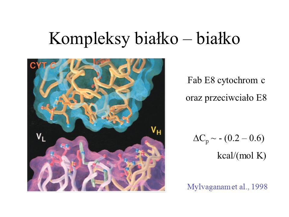 Kompleksy białko – białko