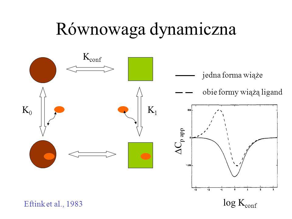 Równowaga dynamiczna Kconf K1 K0 log Kconf DCp app jedna forma wiąże