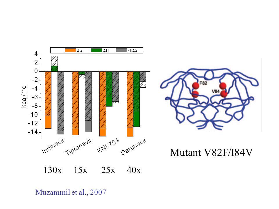 130x 15x 25x 40x Mutant V82F/I84V Muzammil et al., 2007