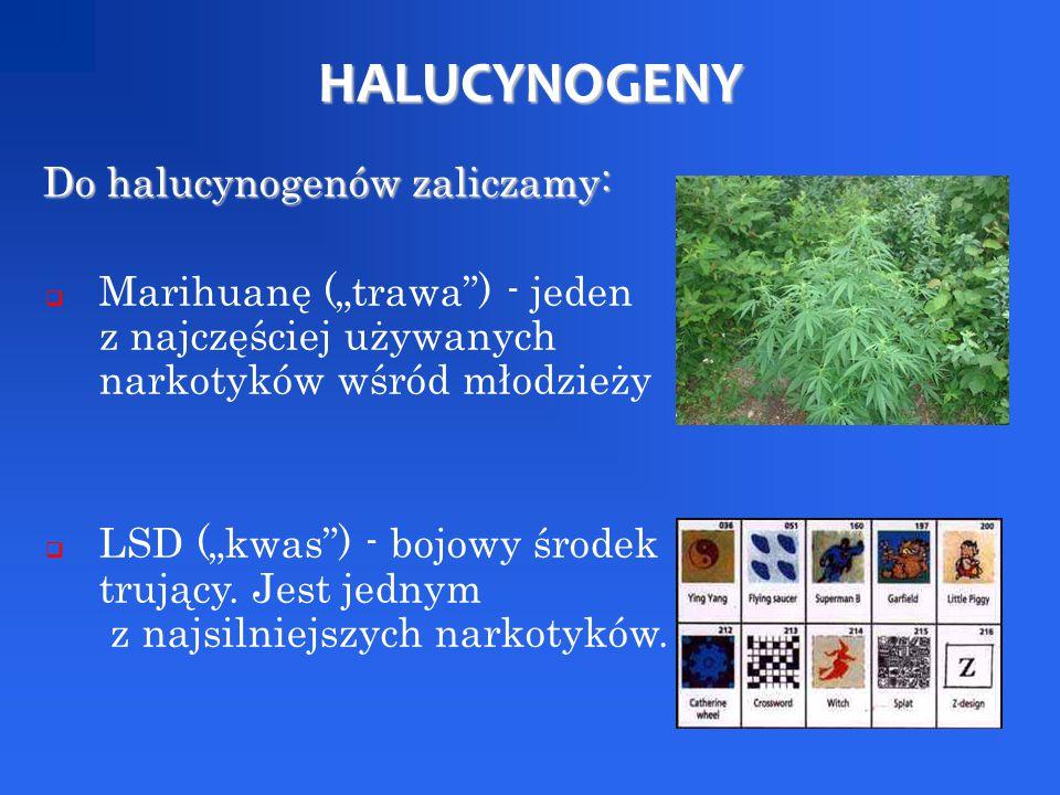 HALUCYNOGENY Do halucynogenów zaliczamy: