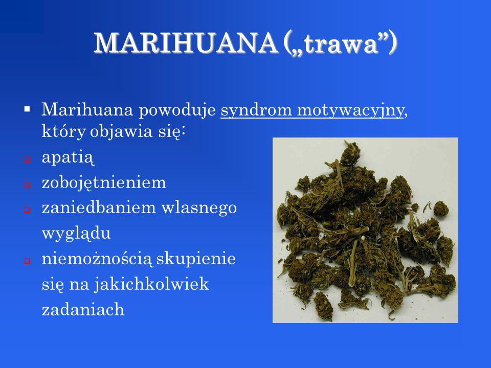 """MARIHUANA (""""trawa ) Marihuana powoduje syndrom motywacyjny, który objawia się: apatią. zobojętnieniem."""