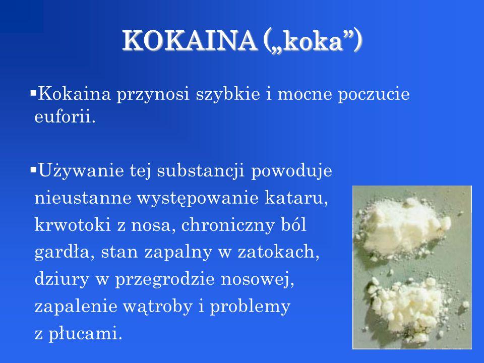 """KOKAINA (""""koka ) Kokaina przynosi szybkie i mocne poczucie euforii."""