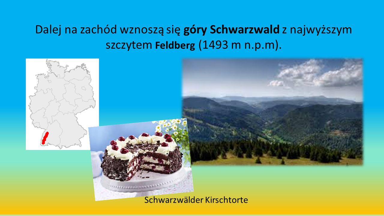Dalej na zachód wznoszą się góry Schwarzwald z najwyższym szczytem Feldberg (1493 m n.p.m).