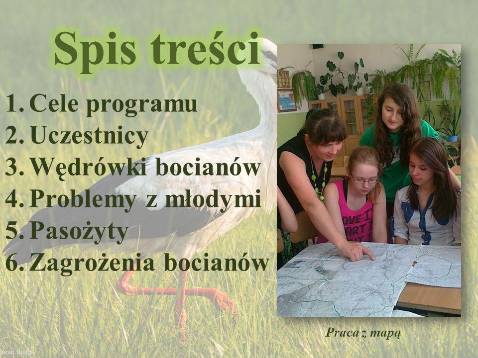 Spis treści Cele programu Uczestnicy Wędrówki bocianów