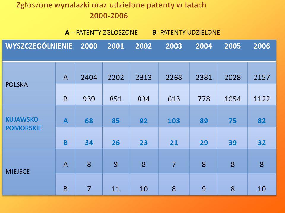 Zgłoszone wynalazki oraz udzielone patenty w latach 2000-2006