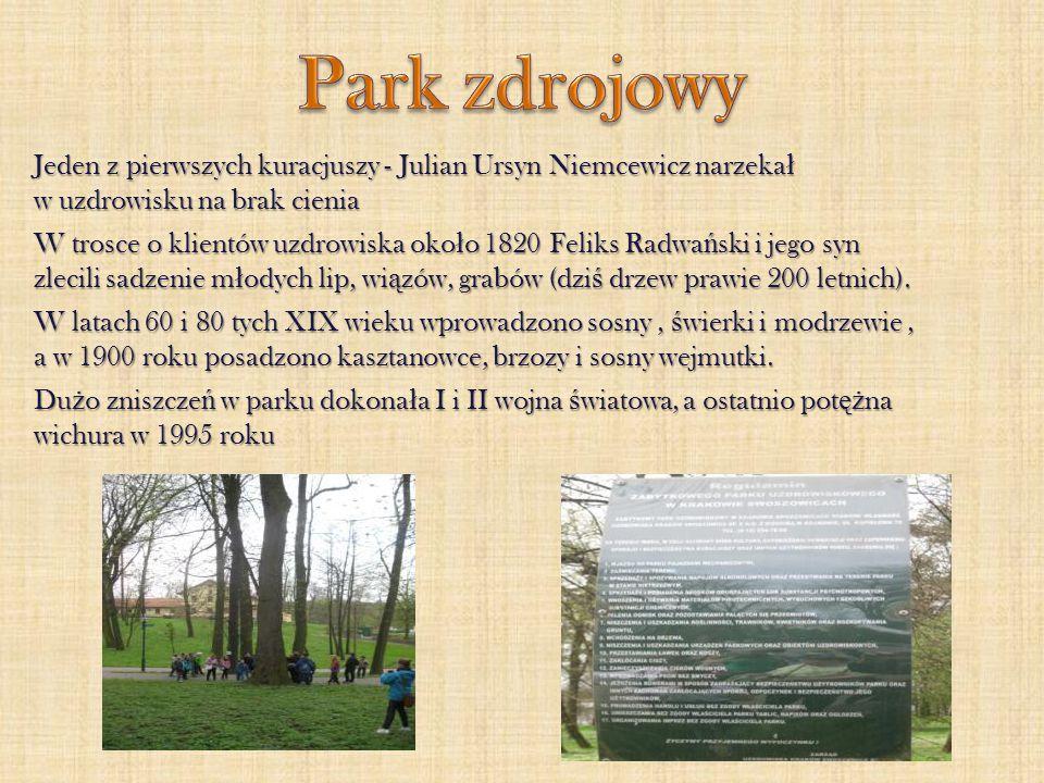 Park zdrojowy Jeden z pierwszych kuracjuszy - Julian Ursyn Niemcewicz narzekał w uzdrowisku na brak cienia.
