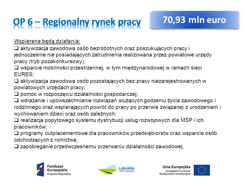 OP 6 – Regionalny rynek pracy