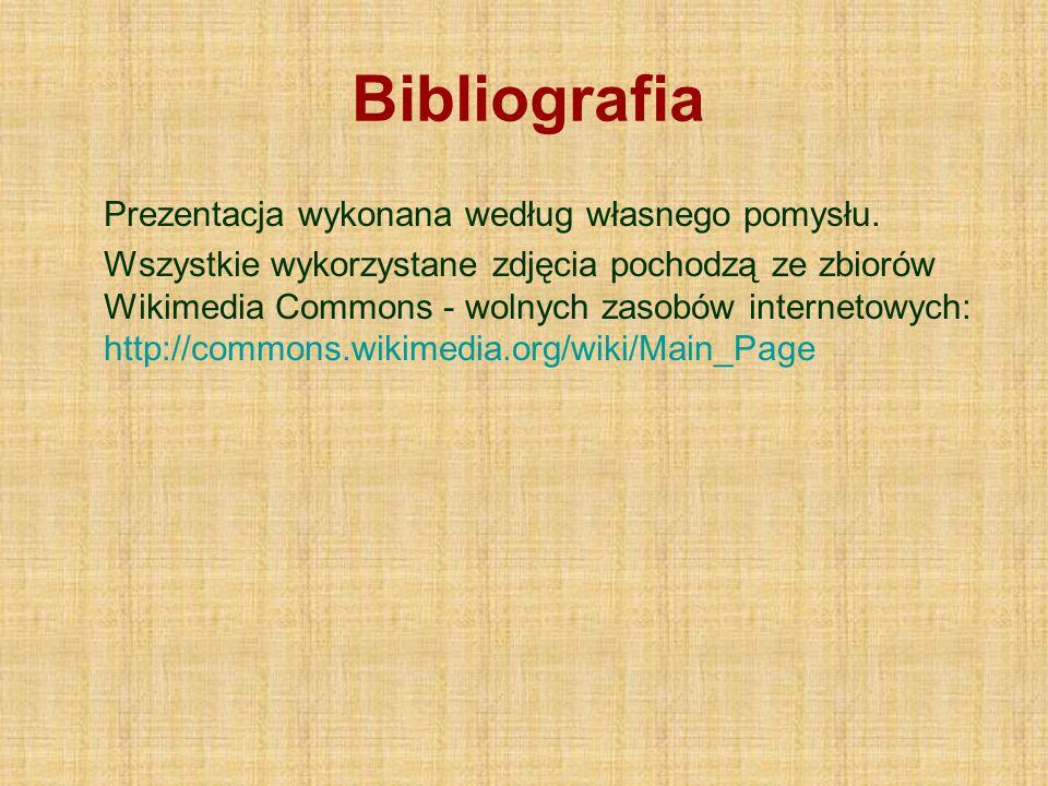 Bibliografia Prezentacja wykonana według własnego pomysłu.