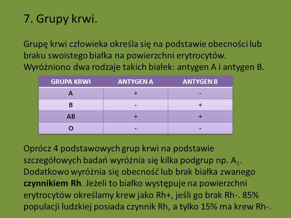7. Grupy krwi.