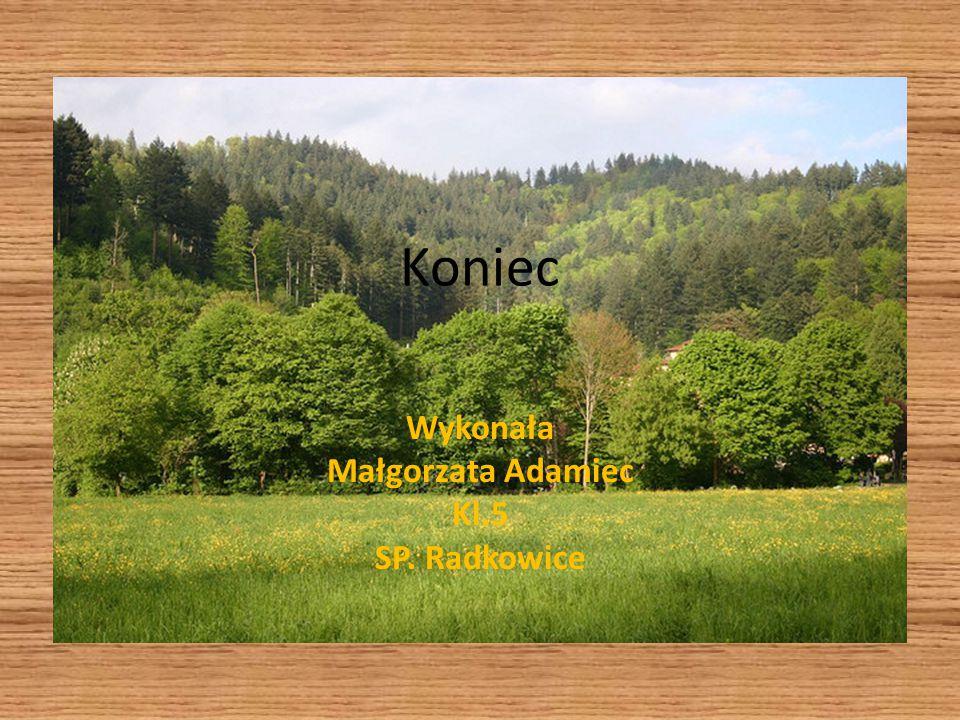 Wykonała Małgorzata Adamiec Kl.5 SP. Radkowice
