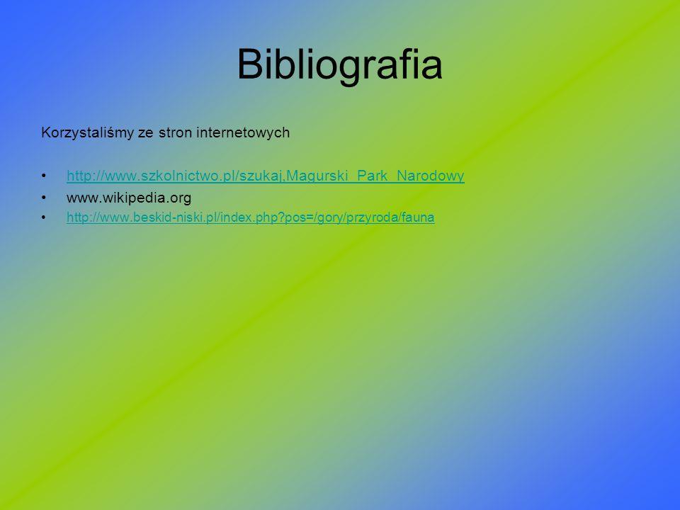 Bibliografia Korzystaliśmy ze stron internetowych