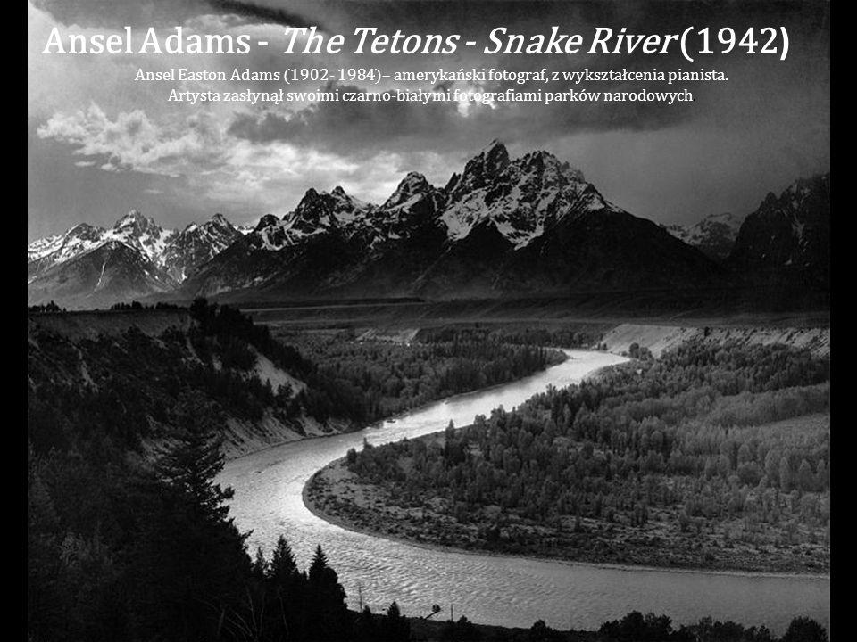 Artysta zasłynął swoimi czarno-białymi fotografiami parków narodowych.