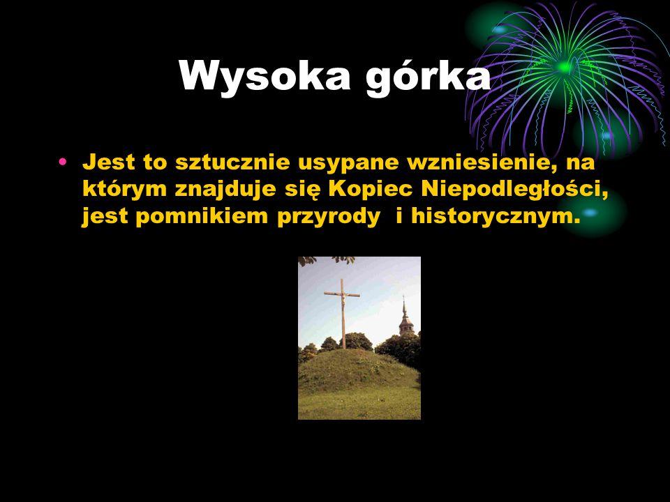 Wysoka górka Jest to sztucznie usypane wzniesienie, na którym znajduje się Kopiec Niepodległości, jest pomnikiem przyrody i historycznym.