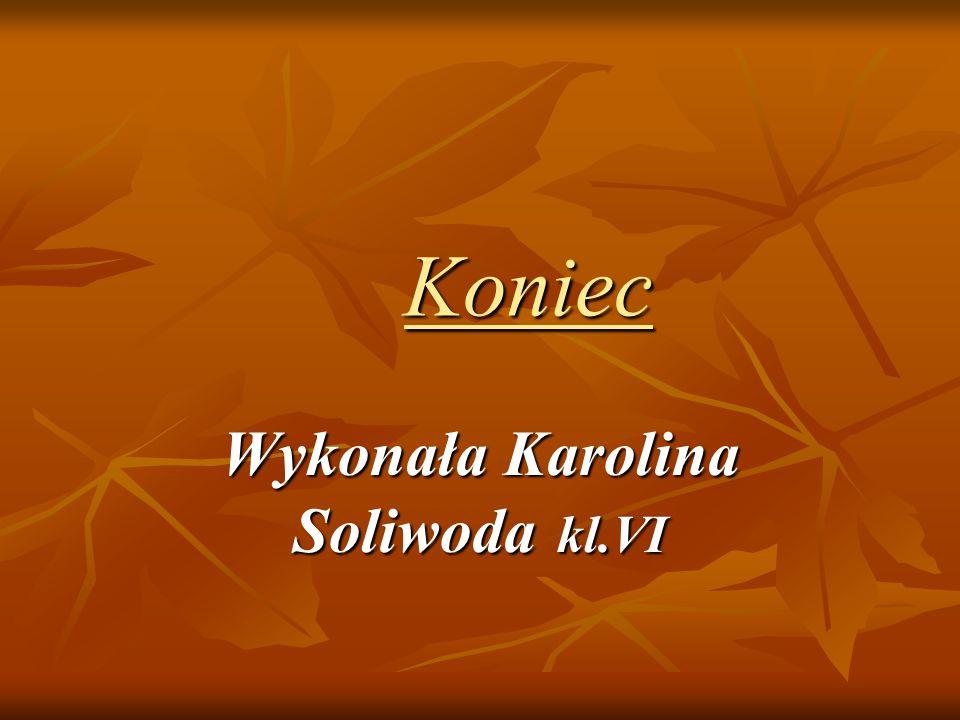 Wykonała Karolina Soliwoda kl.VI