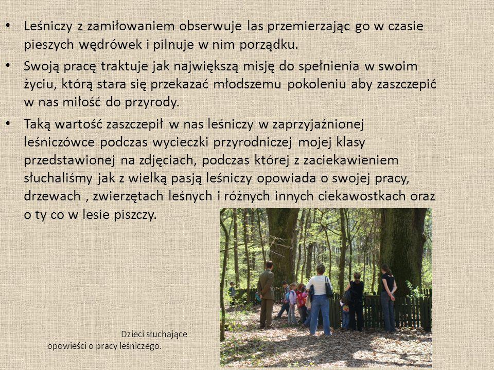 Dzieci słuchające opowieści o pracy leśniczego.