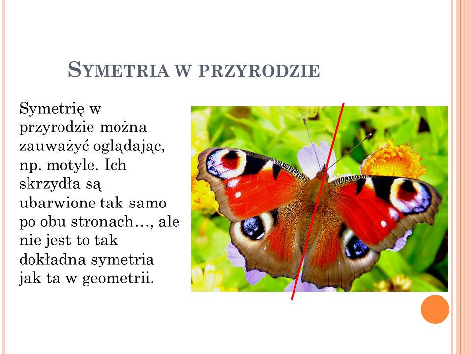 Symetria w przyrodzie