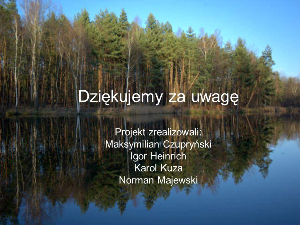Dziękujemy za uwagę Projekt zrealizowali: Maksymilian Czupryński