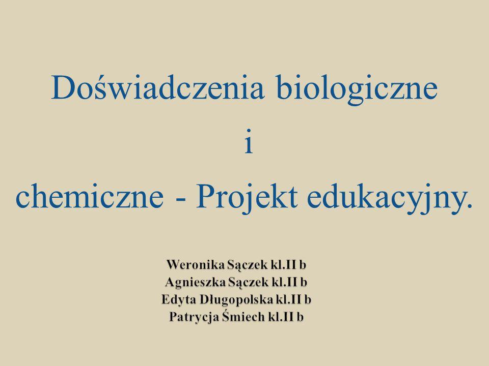 Agnieszka Sączek kl.II b Edyta Długopolska kl.II b