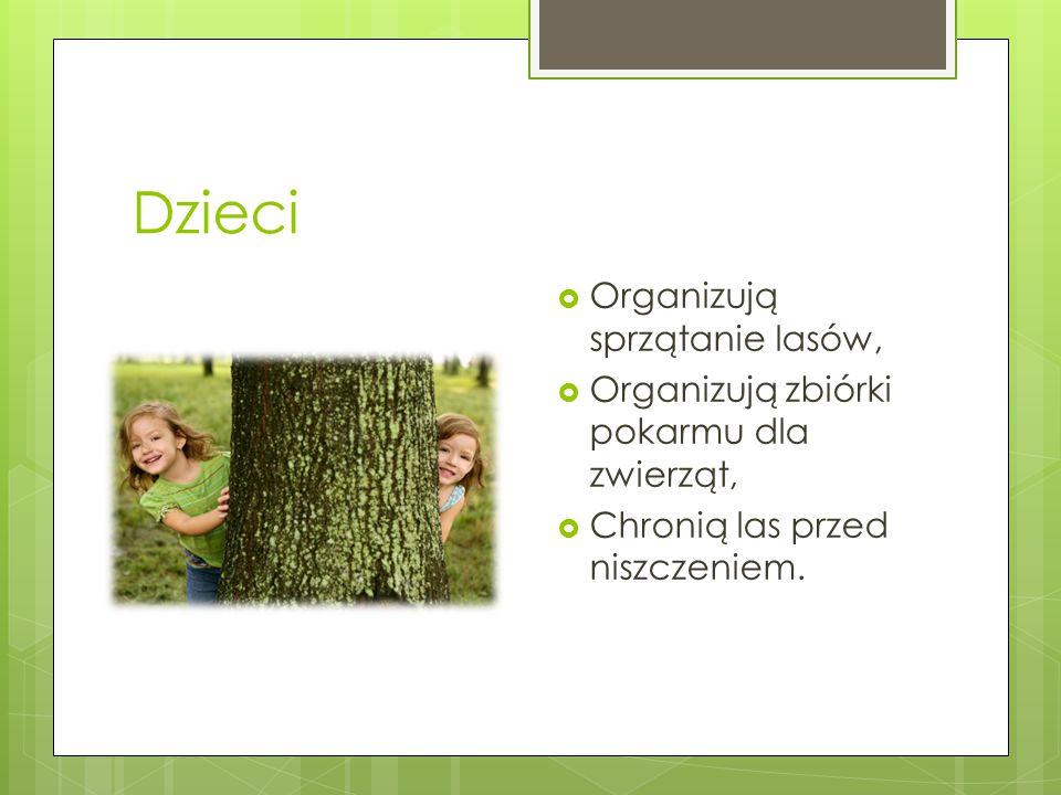 Dzieci Organizują sprzątanie lasów,