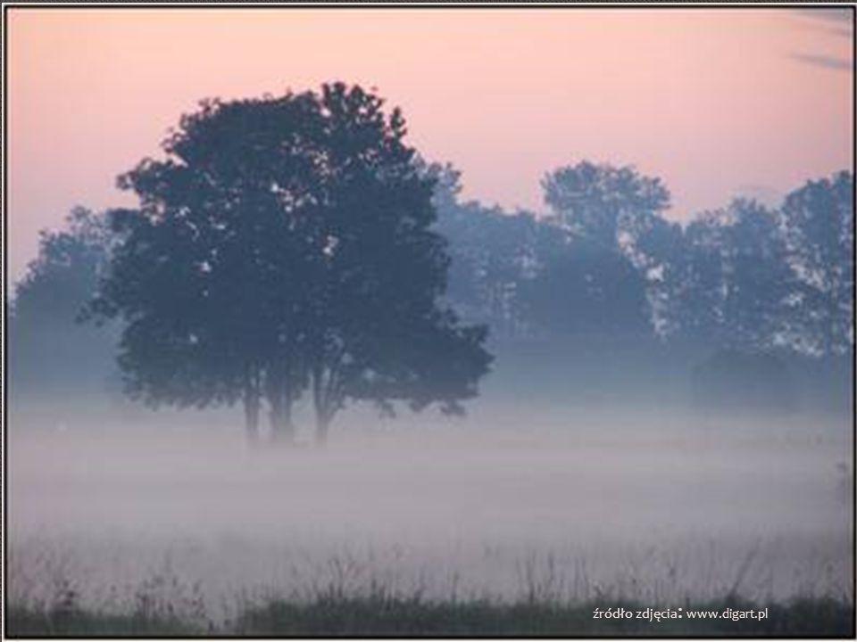 źródło zdjęcia: www.digart.pl