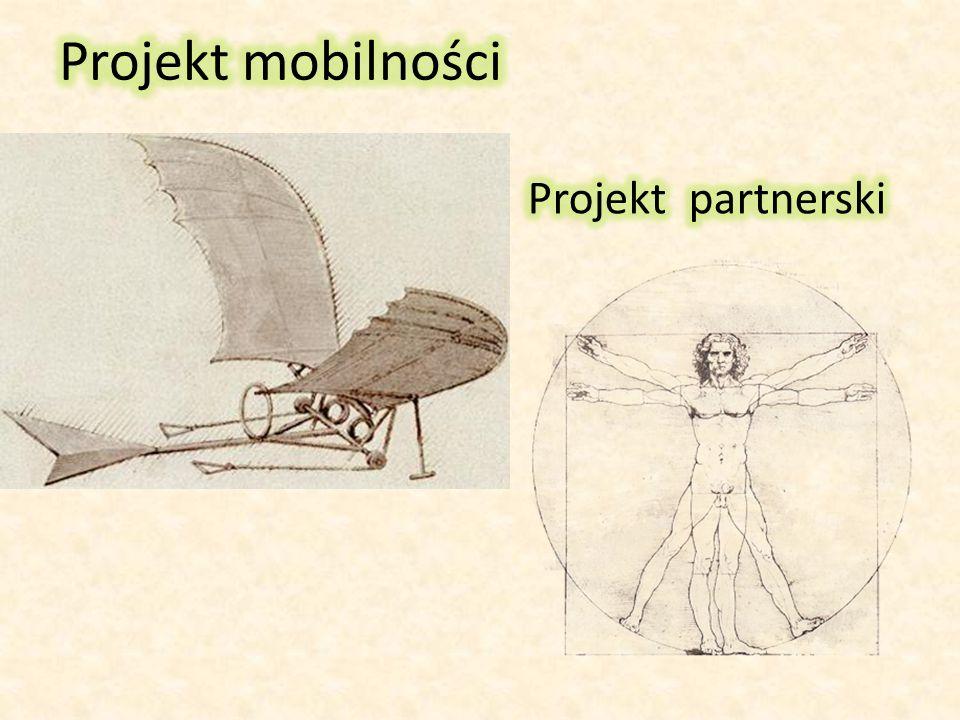 Projekt mobilności Projekt partnerski
