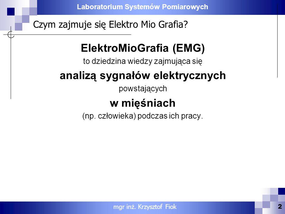 Czym zajmuje się Elektro Mio Grafia