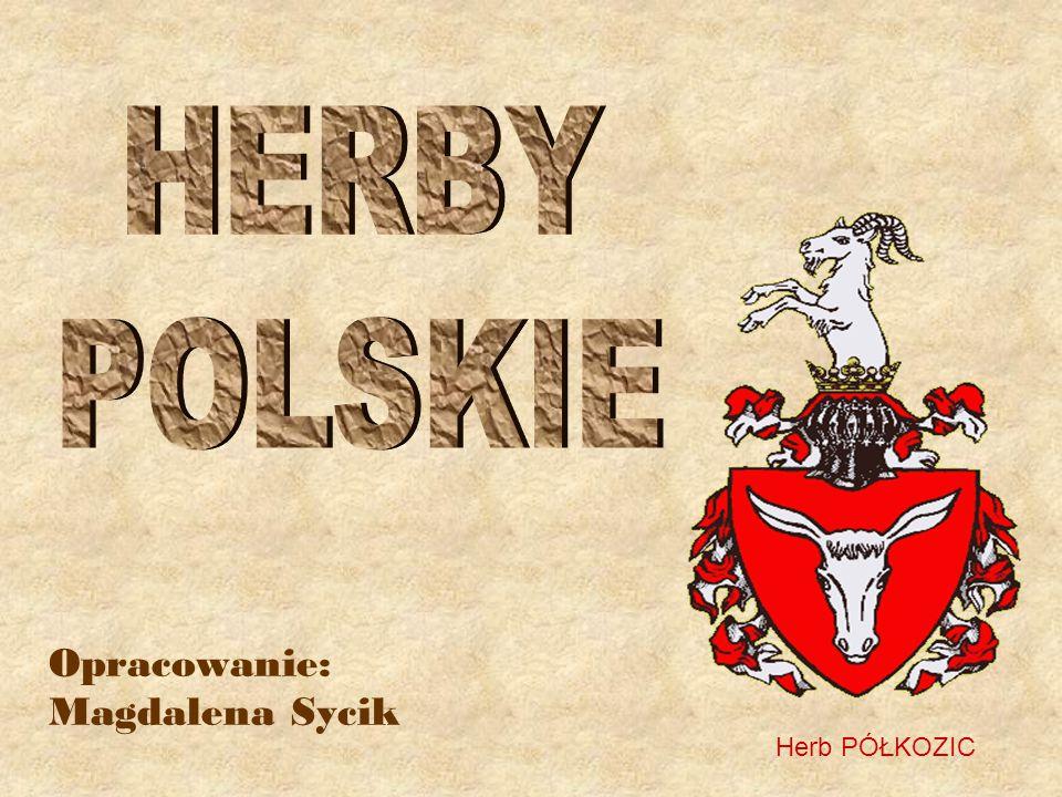 Opracowanie: Magdalena Sycik