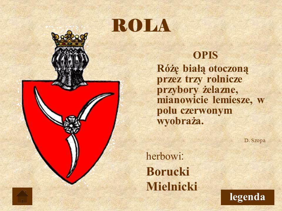 ROLA Borucki Mielnicki OPIS