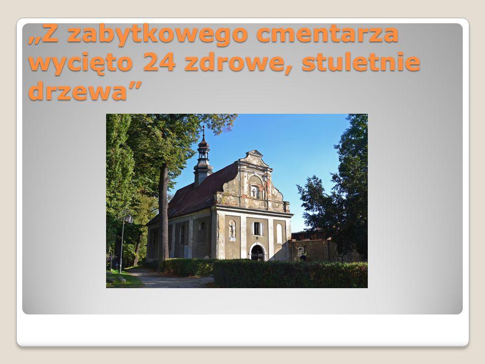 """""""Z zabytkowego cmentarza wycięto 24 zdrowe, stuletnie drzewa"""