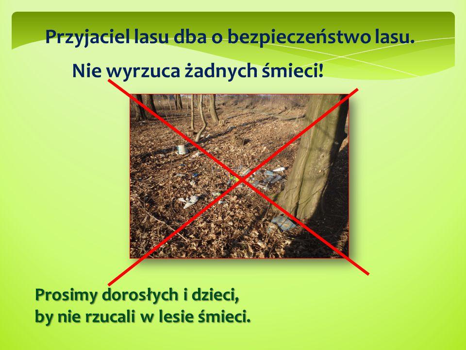 Przyjaciel lasu dba o bezpieczeństwo lasu.