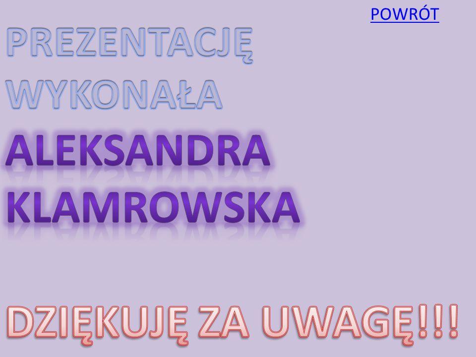 POWRÓT PREZENTACJĘ WYKONAŁA ALEKSANDRA KLAMROWSKA DZIĘKUJĘ ZA UWAGĘ!!!