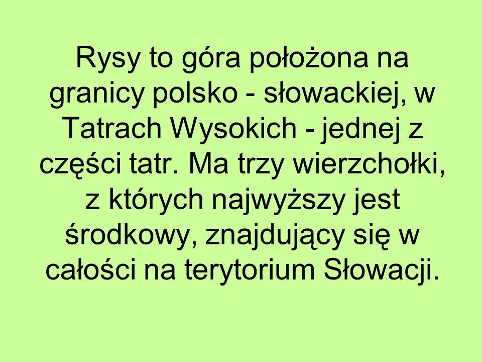 Rysy to góra położona na granicy polsko - słowackiej, w Tatrach Wysokich - jednej z części tatr.