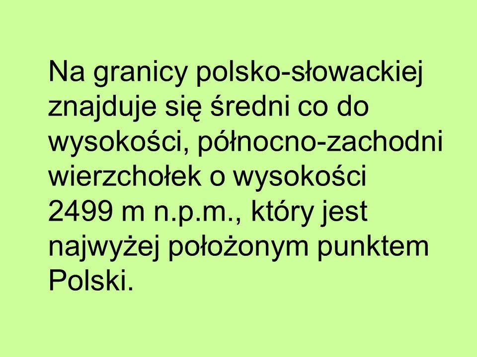 Na granicy polsko-słowackiej znajduje się średni co do wysokości, północno-zachodni wierzchołek o wysokości 2499 m n.p.m., który jest najwyżej położonym punktem Polski.