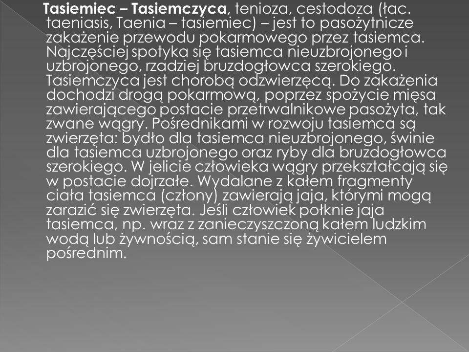 Tasiemiec – Tasiemczyca, tenioza, cestodoza (łac