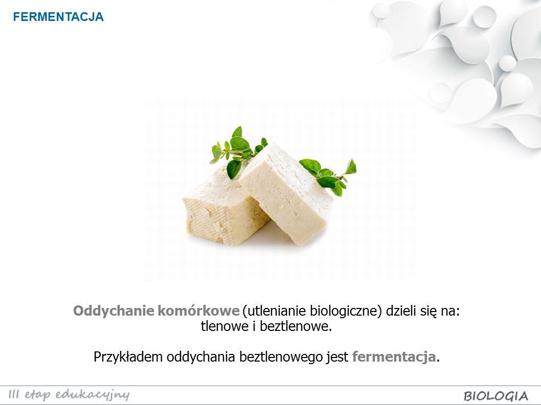 FERMENTACJA Oddychanie komórkowe (utlenianie biologiczne) dzieli się na: tlenowe i beztlenowe.