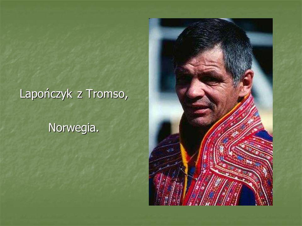 Lapończyk z Tromso, Norwegia.
